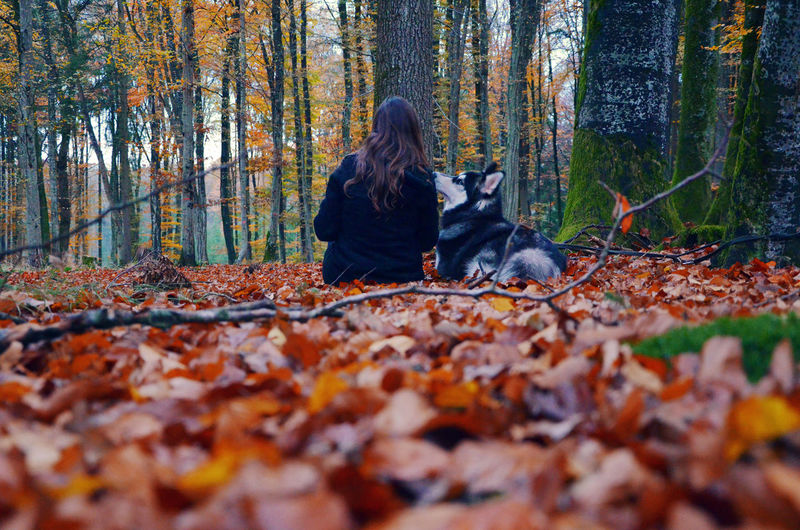 Woman with dog sitting on field in forest