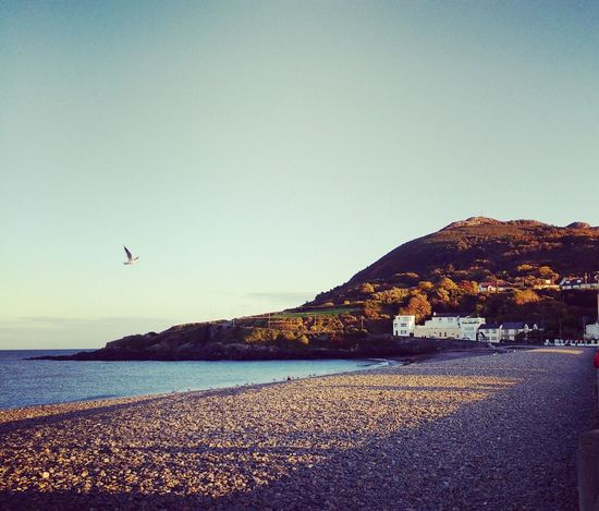 Bray, Ireland Beach The Great Outdoors With Adobe