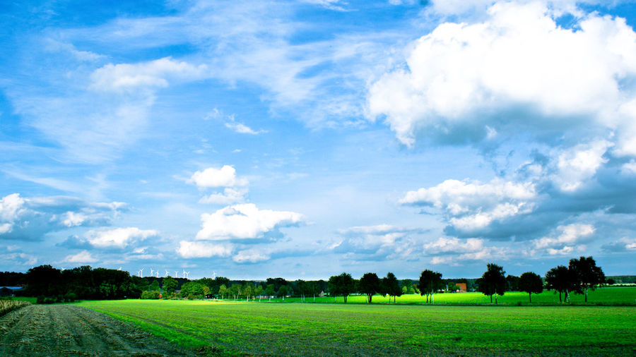 Agriculture Beauty In Nature Blue Cloud - Sky Day Field Grass Growth Landscape Nature No People Outdoors Rural Scene Scenics Sky Tranquil Scene Tranquility Tree