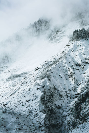 Cable Car Hailuogou Valley Sichuan Beauty In Nature China Glacier Mountains Nature No People Outdoors Pine Tree Snow Snow Mountain Winter