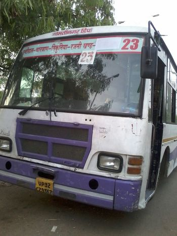 What The Bus?Lucknow,India What The Bus? Lucknow India