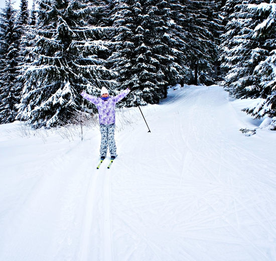 Young happy woman in winter ski clothing skiing in beautiful coniferous fir forest. winter sport