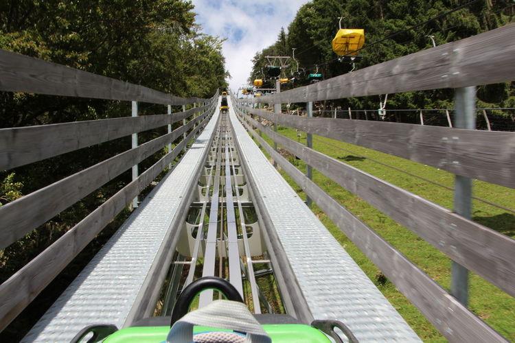 Amusement Park Ride Amidst Trees