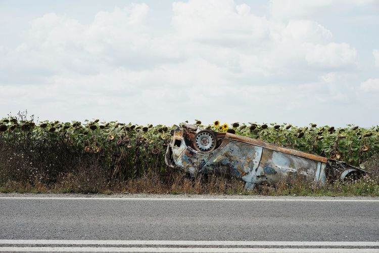 Burnt Burnt Car Wreck Wrecked Wrecked Car Accidents And Disasters Accident Car Sunflower Field Sky Cloud - Sky Farmland Cultivated Land Agricultural Field Crop  Farm