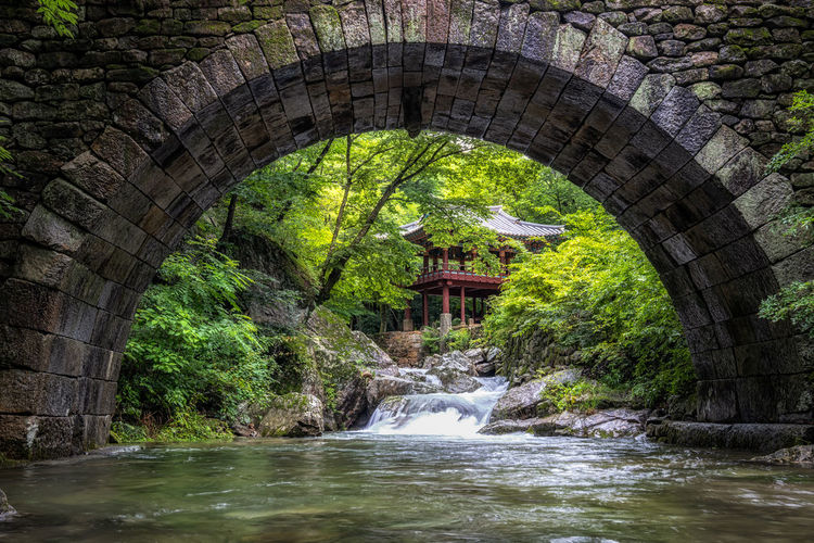 Arch bridge over river in forest