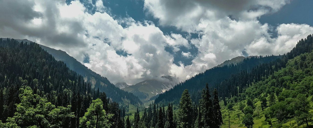 Cloud - Sky Mountain Pine Woodland Tree Forest Nature Beauty In Nature No People Sky Mountain Peak Outdoors Day Tranquility Serendipity Fir Trees Lush - Description Scenics Tranquil Scene Mountain Range Heights Kashmirphotographers Valley View Serenity Nature_collection Blue