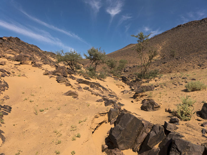 Rock Scenics - Nature Land Rock - Object Landscape Arid Climate Desert Rock Formation Tranquility Climate Nature Solid No People Morocco Hiking Sahara Sand Tafraout Wanderlust Africa Mountain Tranquil Scene Environment Sunlight Sky
