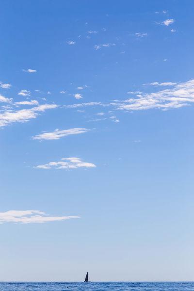 Sail boat on the horizon... Blue Sea Croatia Rovinj Rovinj Croatia Summertime Beauty In Nature Blue Boat Cloud - Sky Horizon Horizon Over Water Sail Sailboat Sailing Scenics - Nature Sea Sea And Sky Seascape Single Boat Sky Summer Tranquil Scene Tranquility Water Waterfront