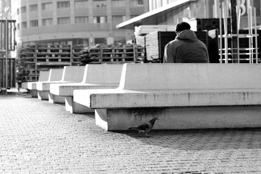 Streetphotographycommunity Myspc_70k Streetsgrammer Streets_storytelling Storyofthestreet Sweetnesday Myfeatureshoot Life_is_street Spicollective Fromstreetswithlove Friendsinperson InterCollective Ourstreets Capturestreets Challengerstreets Thisaintartschool Streetscenesmag Broadmagazine Burnmagazine PhroomMagazine Minimalzine Streetweekly Streetphotography Lonely Sitting Architecture