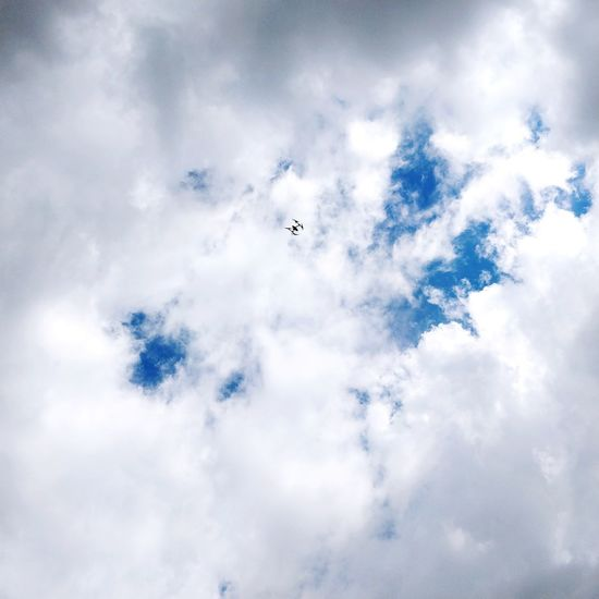 Catching a drone. Cloud - Sky Drone  Bird Flying Airplane Airshow Teamwork Mid-air Aerobatics City Internet Sky Fly Sky Only Media Equipment Big Brother - Orwellian Concept Hovering