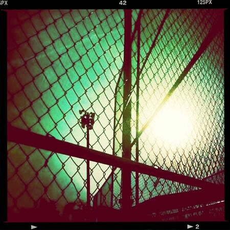 Enjoying The View Refuge Photography