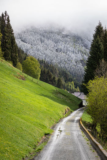 Road amidst land and trees against mountains