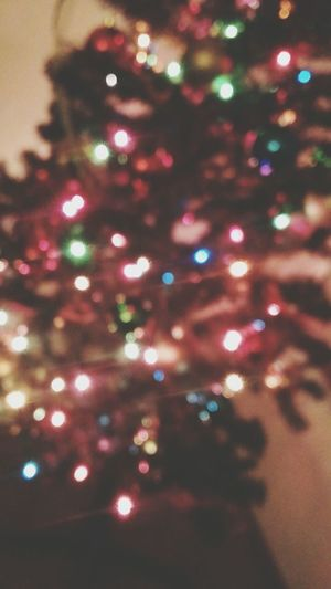Christmas Tree Christmas Lights Christmas Time Decoration Blurry Love Happy Thanksgiving!!