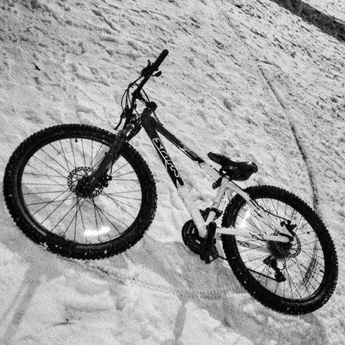 Проперло меня на ночные полеты по лесам, припорошенным первым снегом.) Кому еще по вкусу зимние полеты на байке?) дерт Dirt Stark Night велосипед ночи езда скорость зима снег Лес Чб снег химки левобережье