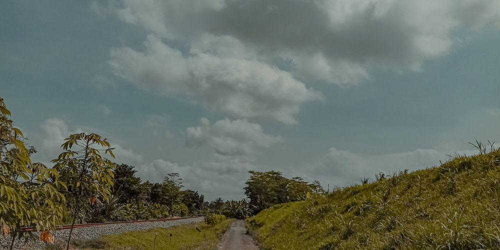 Panoramic view of road amidst plants against sky