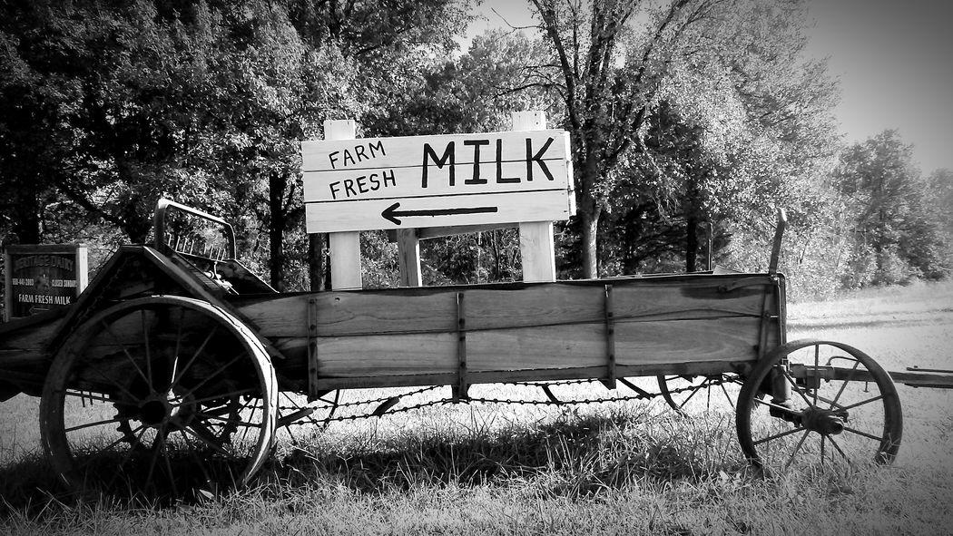 Sign Blackandwhite Wagon  Farm Farm Eggs Antique Antique Farm Machinery Antique Farm Machinery