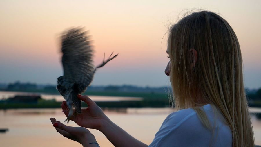 Woman holding bird against sky during sunset