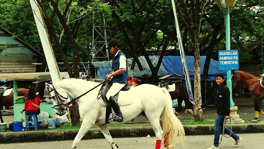 A shy horse rider XperiaZ5 Surabaya City Horse Riding XPERIA Phoneography
