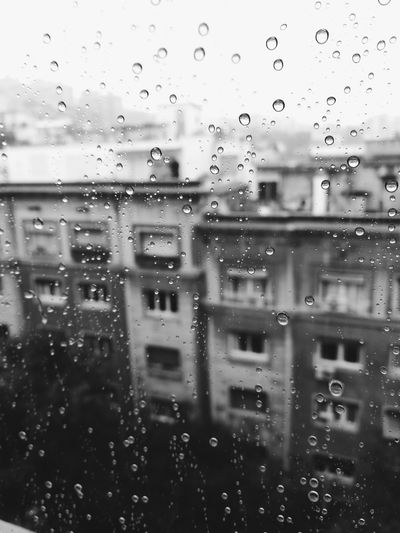 Drop Water Full Frame Backgrounds No People Wet Indoors  Window Close-up Day Nature Freshness Barcelona Rain Rainy Day