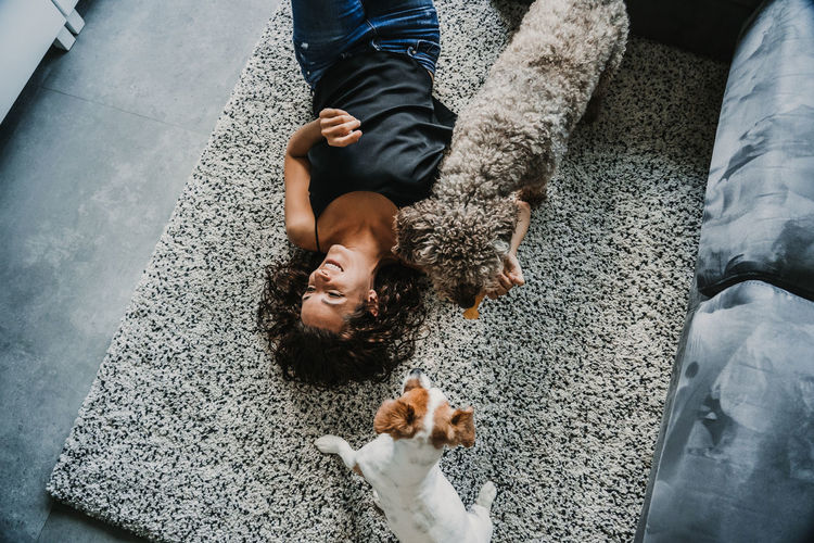 High angle view of woman and dogs on floor