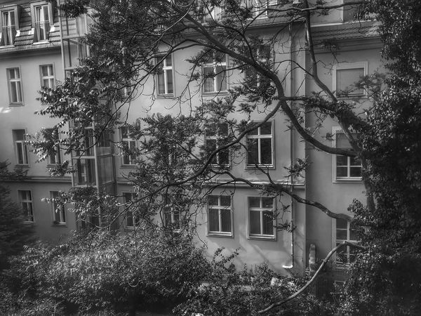 Wallstraße Built Structure Architecture Building Exterior Tree Building Plant Day Residential District
