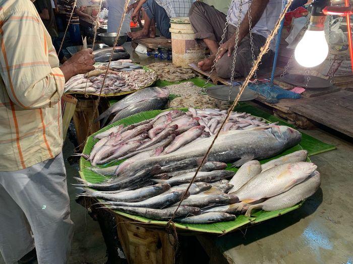 Fish Retail