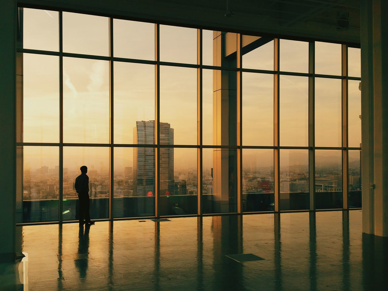 Rear View Of Silhouette Man Overlooking Cityscape