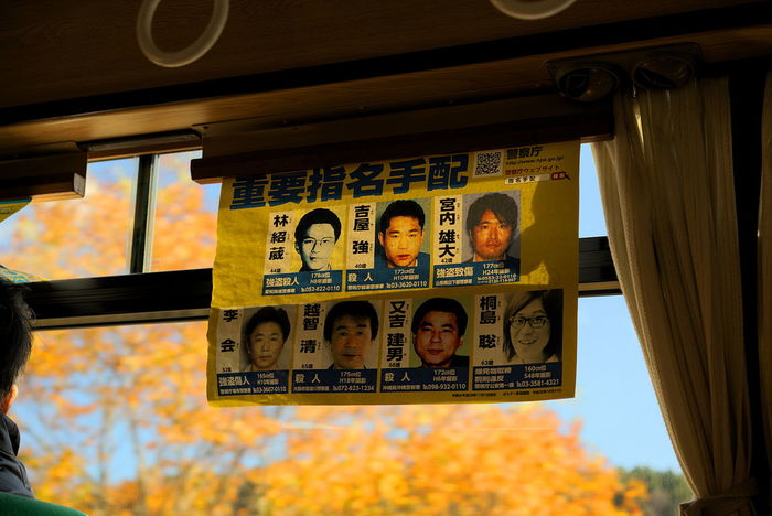 Fujikawaguchiko Autumn Autumn Colors Japan Wanted Poster Communication Criminals Low Angle View Outdoor Photography Text