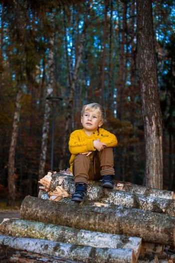 Thoughtful Boy Sitting On Stacked Logs In Forest
