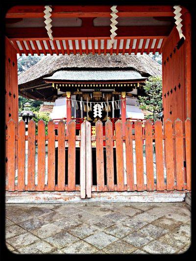 吉田神社 斎場所大元宮 本殿(重要文化財) 全国の神社3132座全てを祀っているので、ここに参れば全国の神社すべてに参ったのと同じご利益が得られるそうです。 The Purist (no Edit, No Filter) Taking Photos Shrine Japanese Style