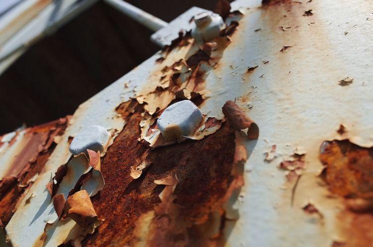 Snapshots Of Life Rustygoodness Rusty Rust 錆