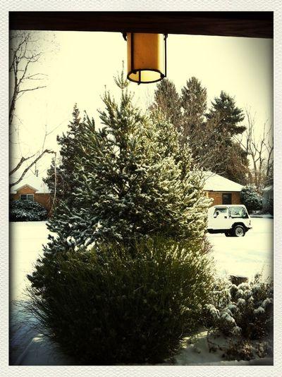 Merry White Christmas, from Denver