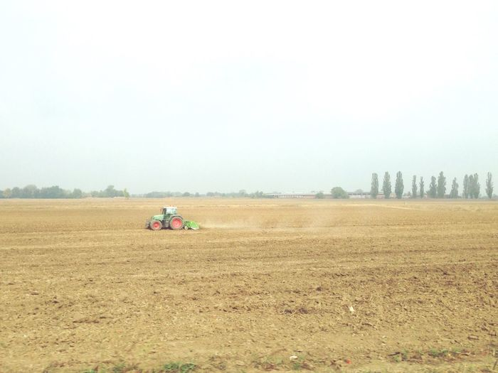 Field Agriculture Landscape Rural Scene Lombardia Late Summer Colours