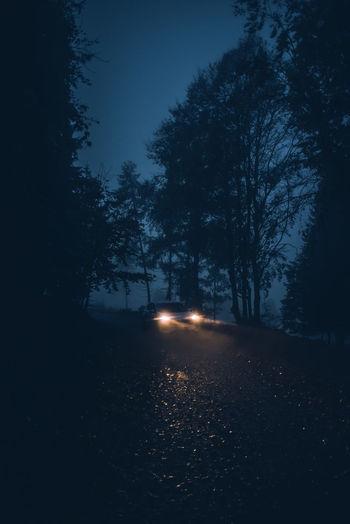 a rainy morning