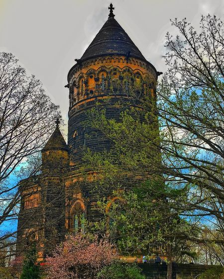 Cleveland Strong Tree Architecture Built Structure Low Angle View Religion Outdoors History Sky Building Exterior Day Place Of Worship Travel Destinations No People Nature Growth Branch Beauty In Nature