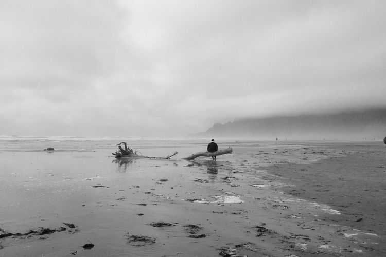 Washed Out , Washed Up in Manzanita , Oregon The Great Outdoors - 2016 EyeEm Awards