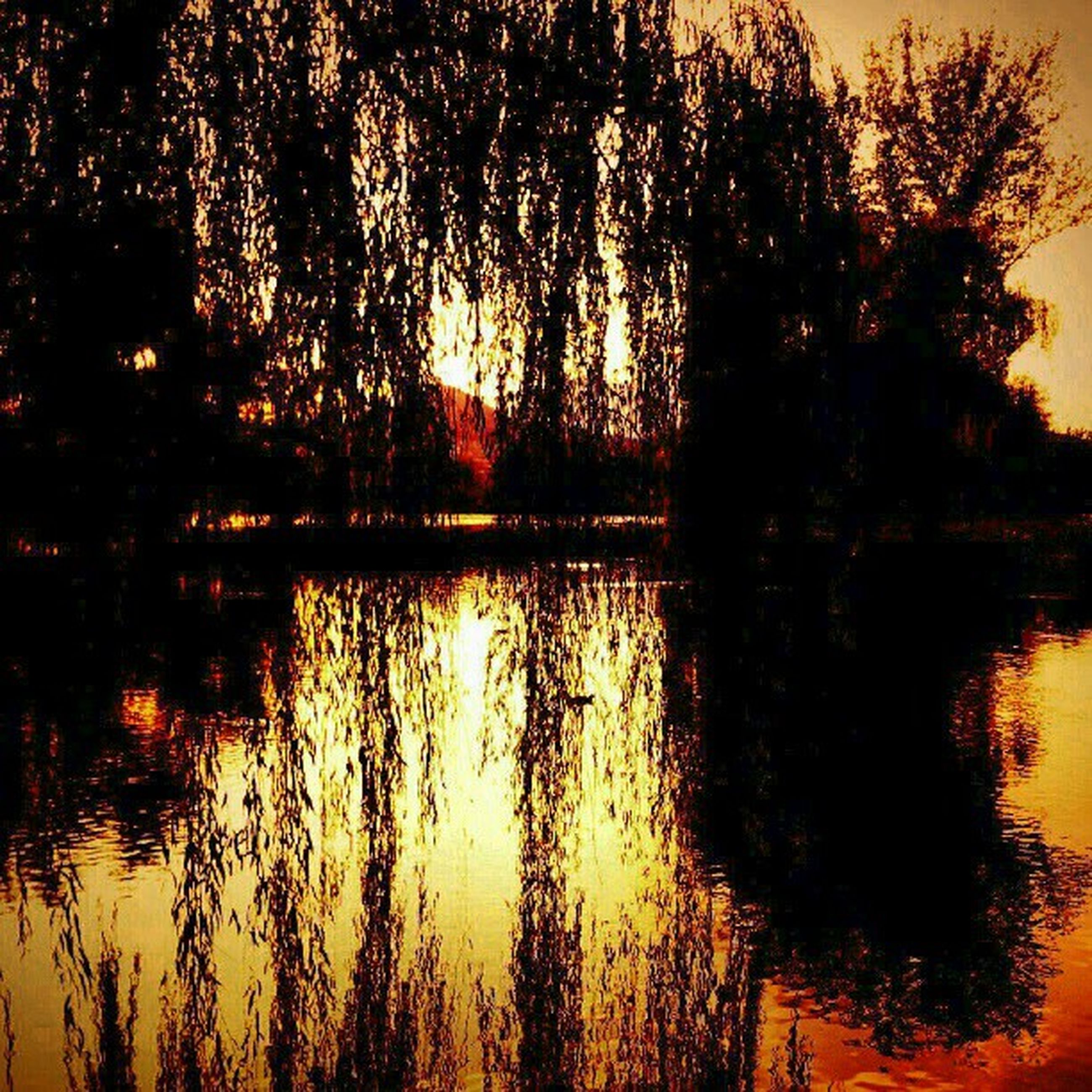 reflection, water, sunset, lake, tree, tranquility, tranquil scene, silhouette, scenics, beauty in nature, orange color, nature, waterfront, idyllic, sky, river, rippled, outdoors, sunlight, no people