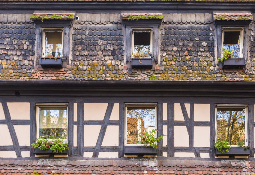 Alsatian traditional wall. Alsace France Construction Halftimbered Rural Alsatian Architecture Background Building Exterior Built Structure Detail Halftimbered House Halftimberedhouse Landmark Lifestyles No People Outdoors Tourism Travel Destinations Windows