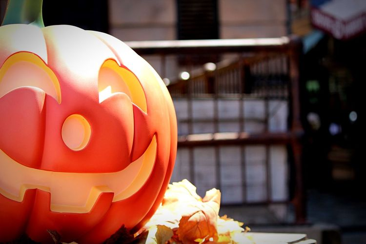 Halloween Oosaka  USJ Holiday