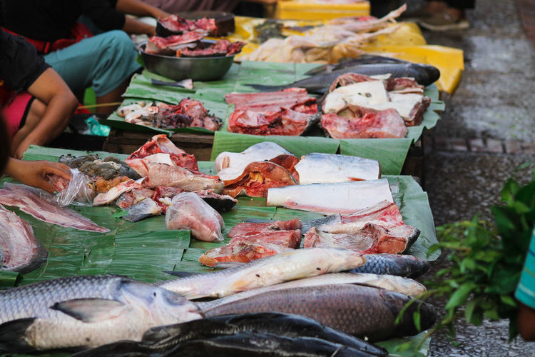 High angle view of exotic fish for sale in market