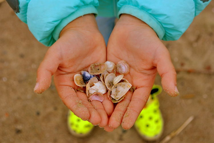 Sinks Beauty In Nature Child's Hand Close-up Day Nature Outdoors Sand First Eyeem Photo