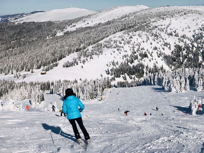 Skier going down the slope with view of snowcapped mountains ahead on a day with clear blue sky Idyllic Coniferous Tree Pine Tree Forest Blue Sky Landscape Snowcapped Mountain Resort Movement Motion Slope Skiing Skier Winter Snow Cold Temperature Day Nature Mountain Full Length Leisure Activity Vacations Holiday Rear View Winter Sport Warm Clothing Sport Adult Outdoors Real People