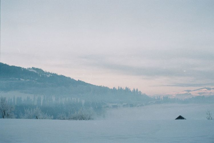 Analogue Photography Misty Morning Pure Snow ❄ Alps Beauty In Nature Cold Temperature Fog Frozen Hazy  Impressionism Landscape Misty Morning Mountain Nature No People Outdoors Scenics Sky Snow Tranquil Scene Tranquility Tree Winter