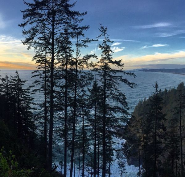 Oregon Nature Cape Lookout, Oregon Oregon Coast Pacific Ocean Sunset Hello World