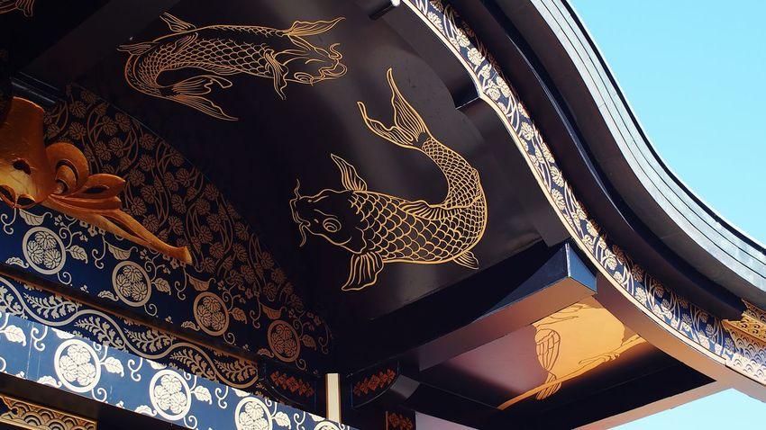龍の遣い Carp Art Japanese Shrine Photowalk CanonFD  Streamzoofamily