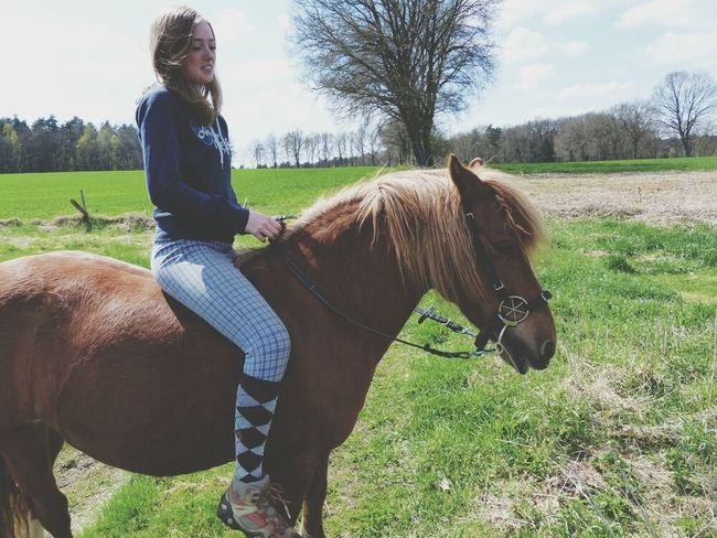 My Best Horse Savannah Happy Beautiful