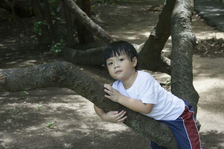 Boy leaning on tree in park