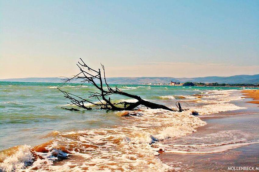 Spiagge Nere a Santa Severa Santa Marinella Italy