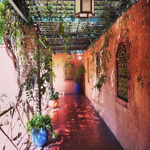 JardinMajorelle Souk Marrakech Marokko