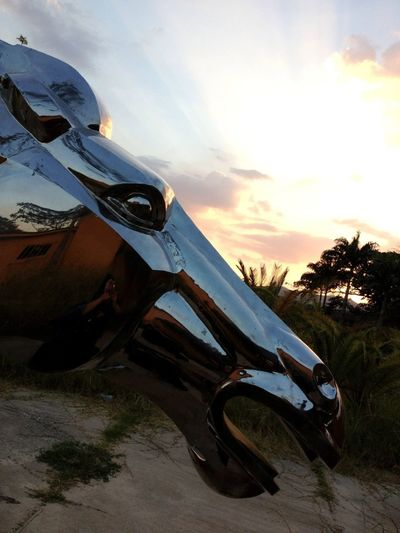 #horse #sunset #guataparo #altosDeGuataparo